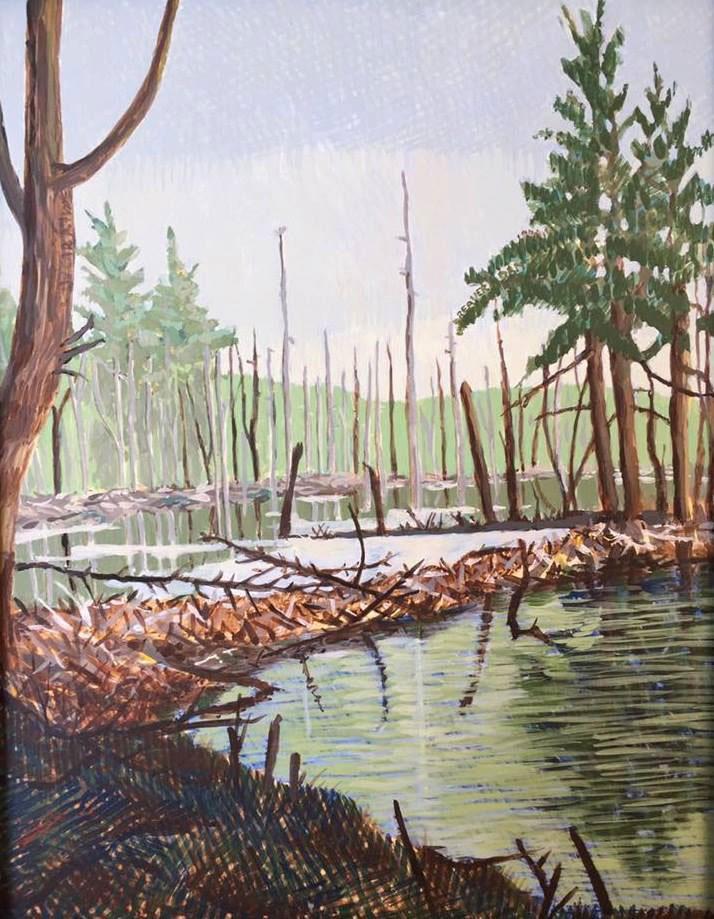 Beaver Dam by Jane Carr