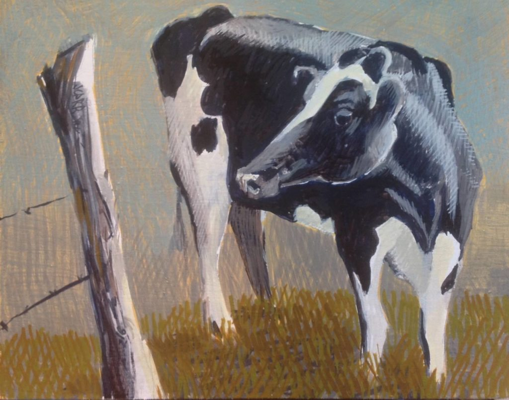 Cow 1 by Jane Carr