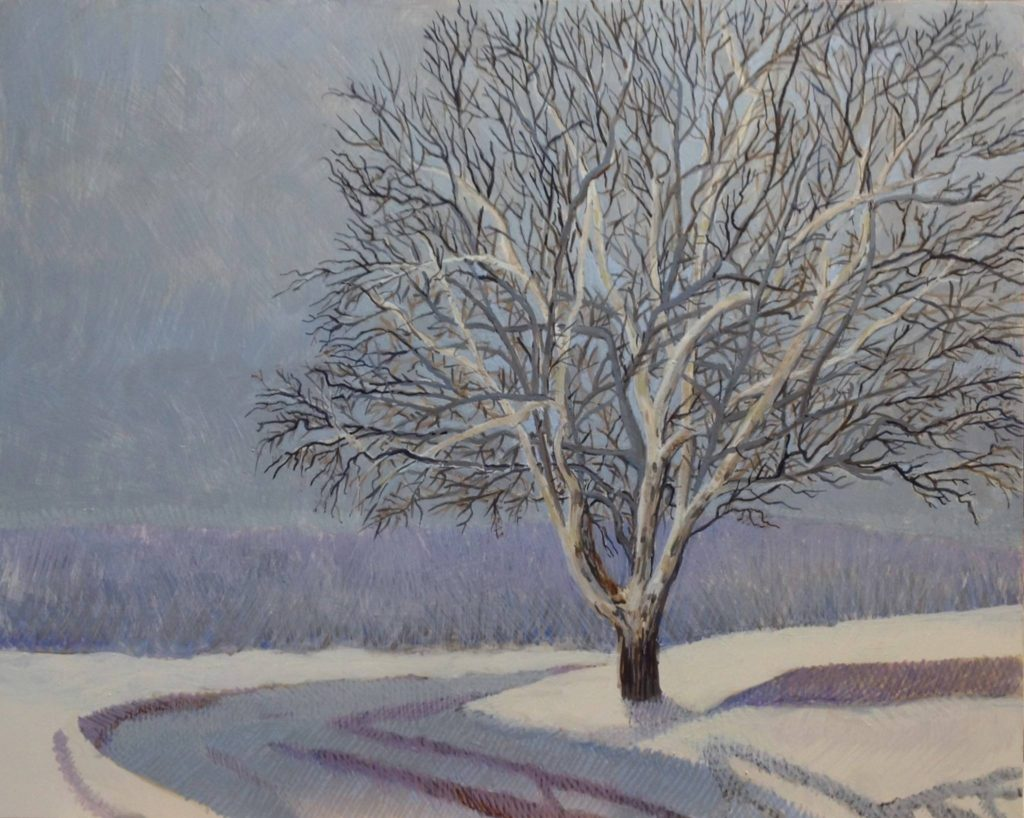 Sycamore by Jane Carr