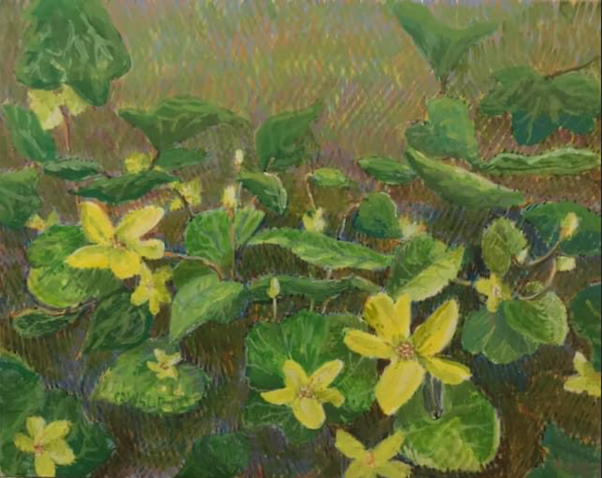 Cowslip by Jane Carr