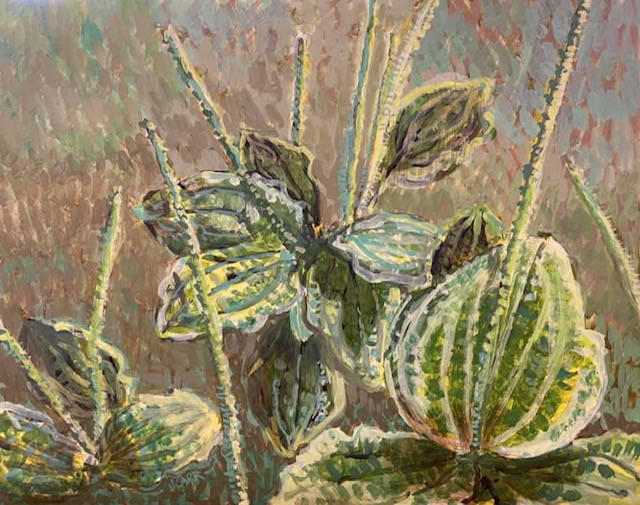 Plantain by Jane Carr