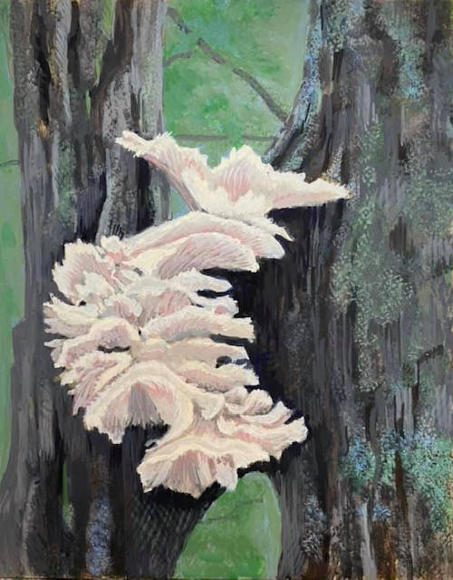 White Oysters by Jane Carr