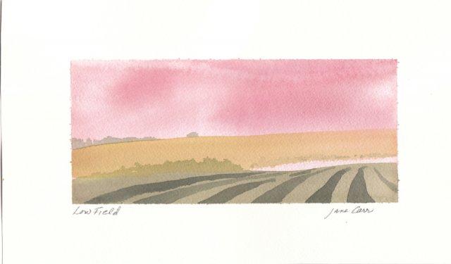 Low Field by Jane Carr